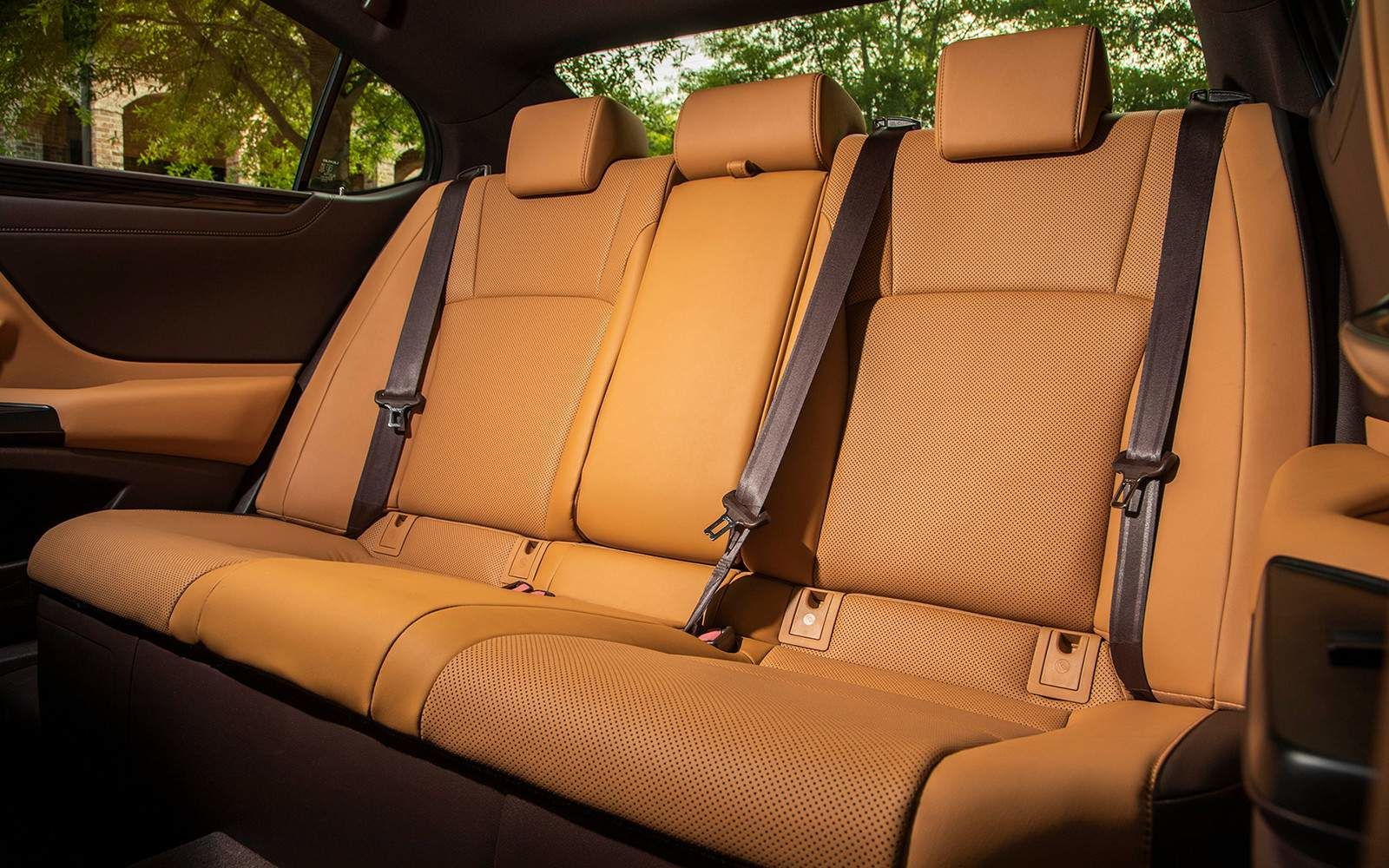 Lexus 2020 Es 350 Ultra Luxury Flaxen Rear Seat L
